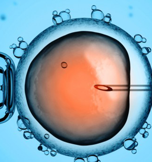 How cultural and religious factors affect fertility treatments